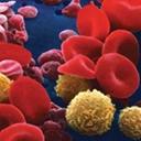Formule sanguine complète