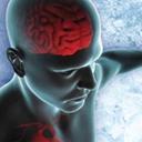 Hypothermie thérapeutique Des soins infirmiers et une surveillance clinique en trois phases (L')